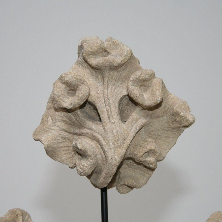 Small Collection of French Medieval Gothic Carved Stone Architectural Fragments For Sale 3