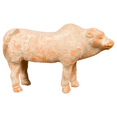 Small Han Dynasty Terracotta Brahman Cattle Mingqi, circa 202 BC-200 AD