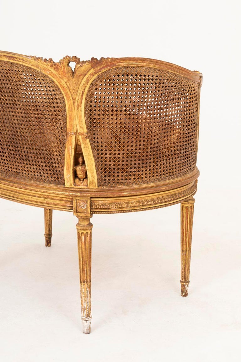 Small Louis XVI Style Cane Sofa in Giltwood, circa 1880 For Sale 3