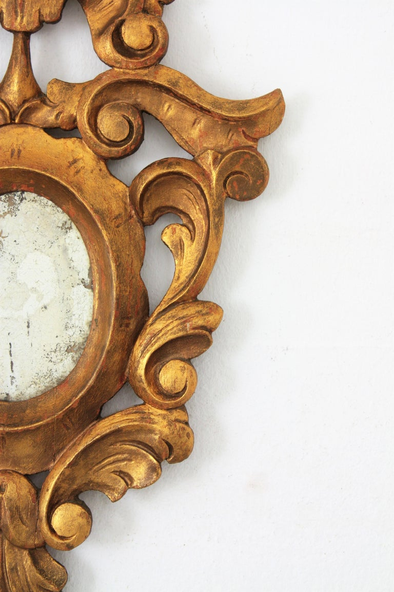 Small Spanish Rococo Style Giltwood Mirror For Sale 2