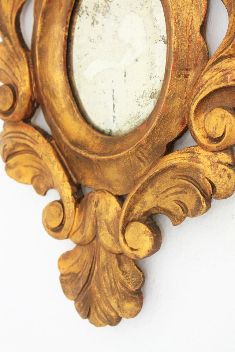 Small Spanish Rococo Style Giltwood Mirror For Sale 4