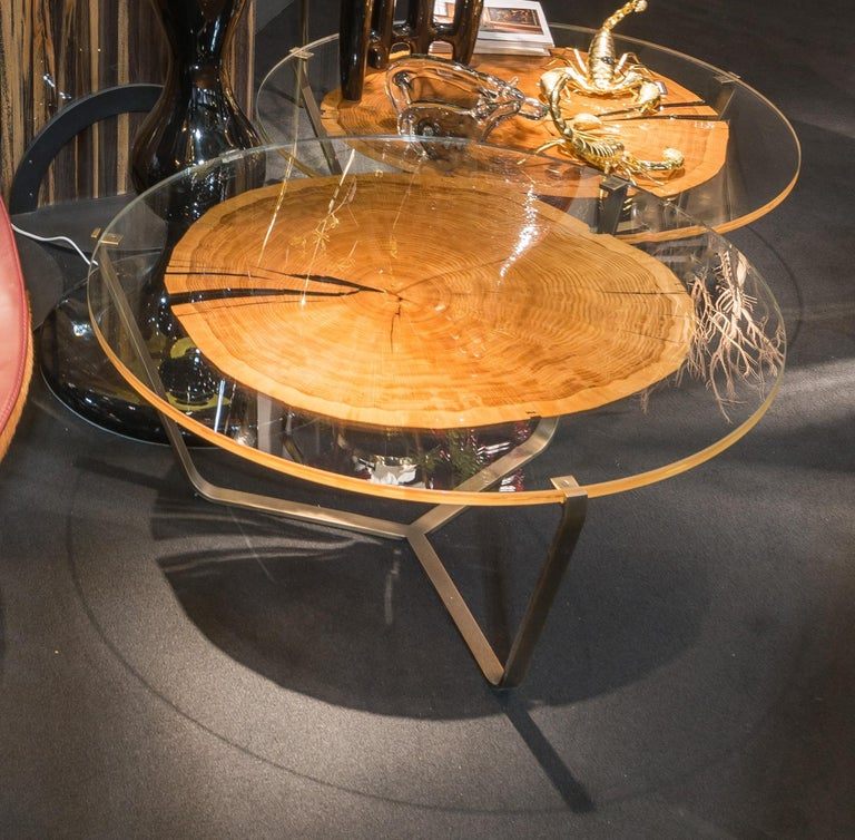 Contemporary Small Table Cortina, in Glass and Clear Wood, Italy For Sale