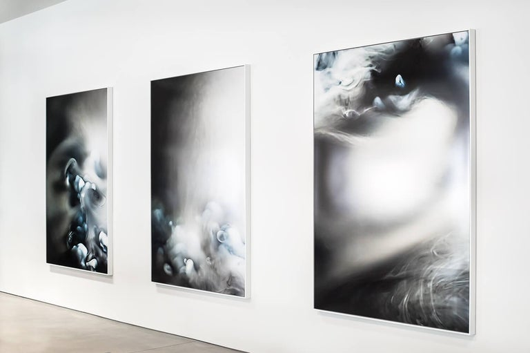 """Smoke and mirrors 6, 2014 Pigment print, aluminium, acrylic, wood Measures: 60"""" H x 84"""" W Edition of 3 From the solo exhibition at The New gallery.  About Daniele Albright (artist): Daniele Albright is an multidisciplinary artist whose work"""