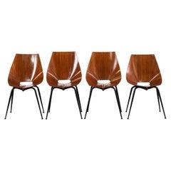 Società Compensati Curvi Set of Four Mid-Century Modern Dining Chairs, 1950s