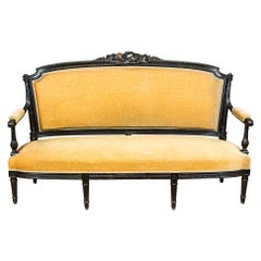 Sofa from the Mid-19th Century