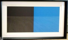"""""""Grids and Color Plate #44"""" by Sol Lewitt"""
