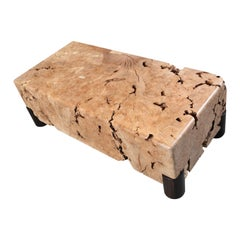 Solid Western Maple Burl Coffee Table, in Stock