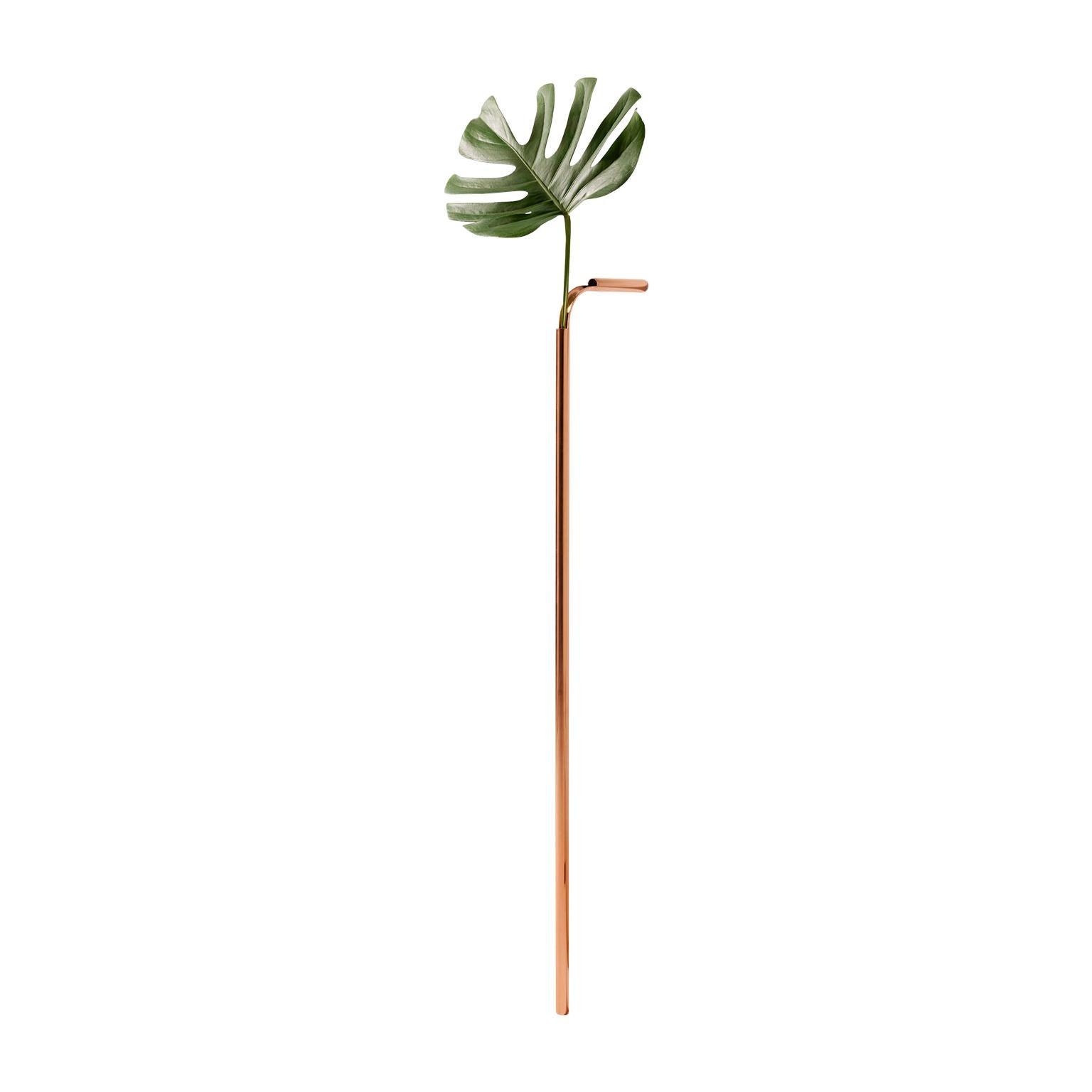 Solo Vase in Copper by Wentz, Brazilian Contemporary Design