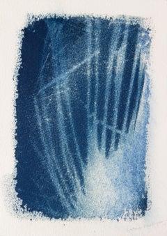 'Sal y Cicatrices'. Botanical environmental nature drawing