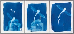 'Hope, Change, and Love'. Dragonfly triptych conceptual artwork