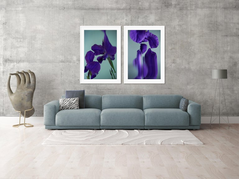 Flowers#07, flowers, purple, water - Contemporary Photograph by Sophie Delaporte