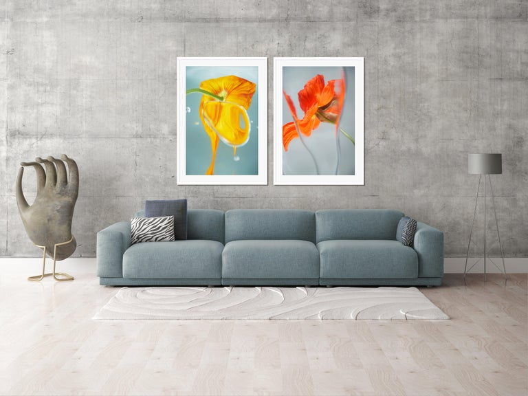 Flowers#19, color, orange, yellow, spring - Contemporary Photograph by Sophie Delaporte