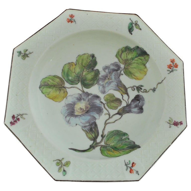 Soup Plate with Hans Sloane Type Painting, Chelsea, circa 1755 For Sale