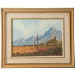 South African Landscape by Don Benzien