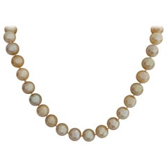 South Sea Pearl Deep Golden Natural Color Round Shape