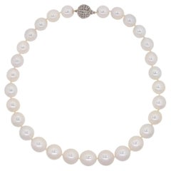 South Sea Pearl Gold Necklace