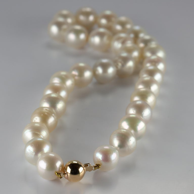 Women's or Men's South Sea Pearl Necklace Princess Length Large Pearls For Sale