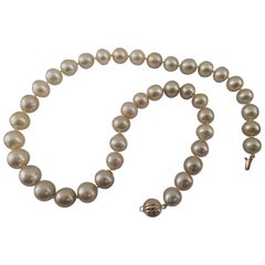 South Sea Pearls, Deep Golden Natural Color, 18 Karat Gold