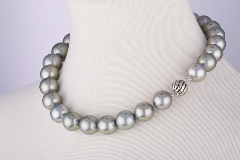 Contemporary South Sea Tahitian Grey Round Pearl Necklace with 14 Karat White Gold Ball Clasp
