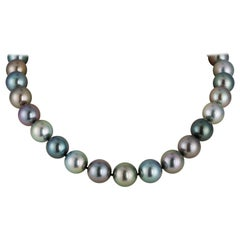South Sea Tahitian Multicolored Pearl Necklace with 18 Karat White Gold Clasp