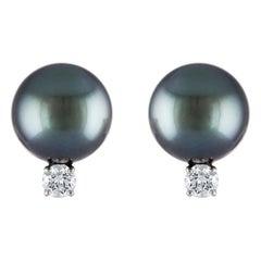 South Sea Tahitian Pearl and Diamond Stud 14 Karat White Gold Earrings