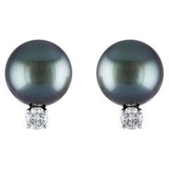 South Sea Tahitian Pearl and Diamond Stud Earrings on 14 Karat White Gold