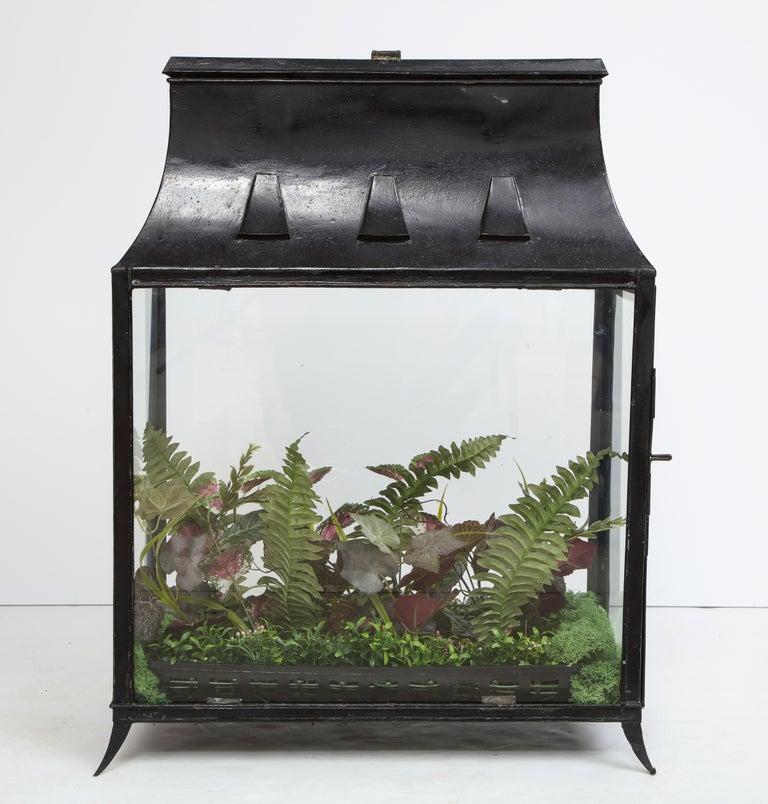 Spacious Glass Terrarium For Sale 4
