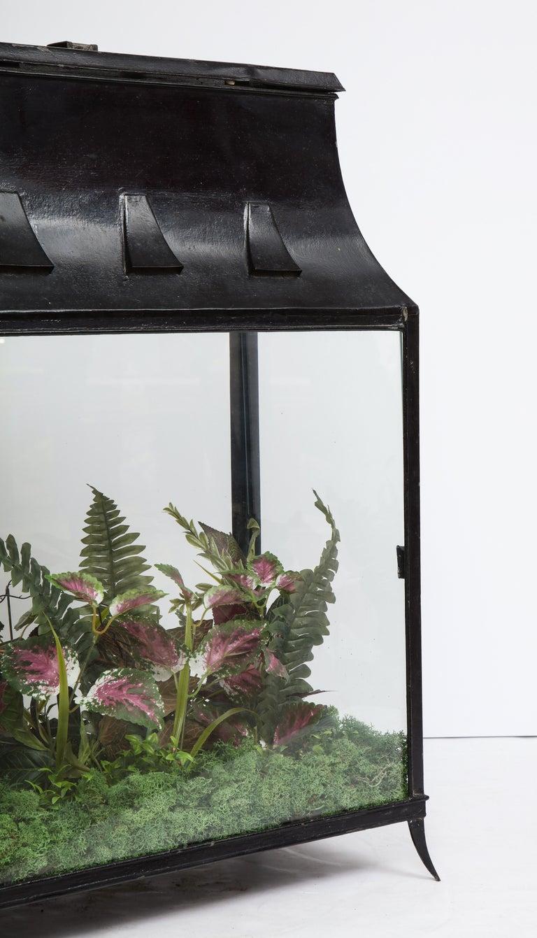 Spacious Glass Terrarium For Sale 7