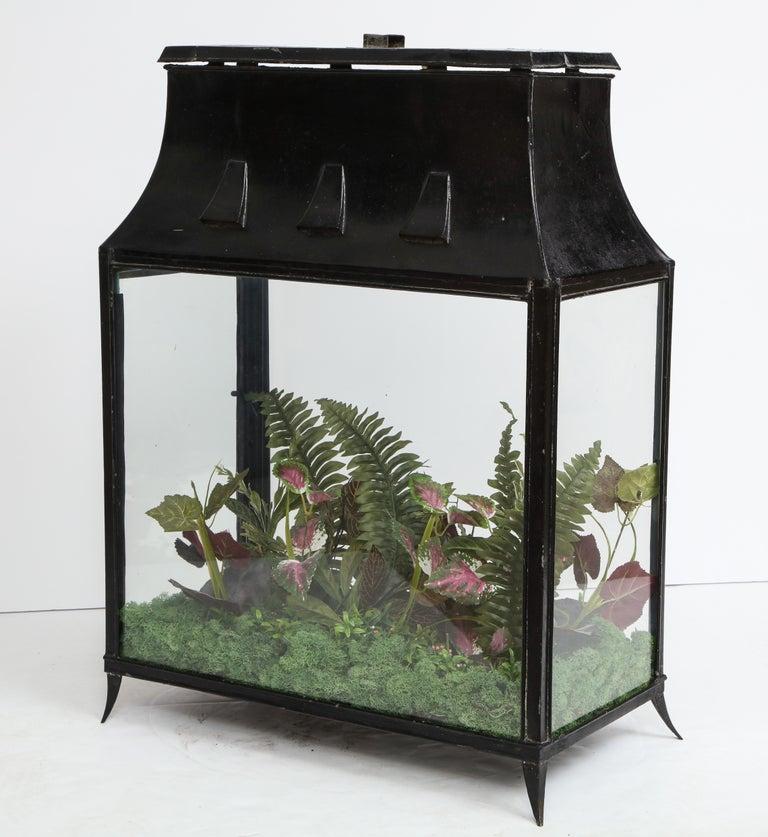 North American Spacious Glass Terrarium For Sale