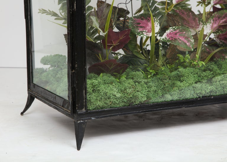 Spacious Glass Terrarium In Good Condition For Sale In New York City, NY