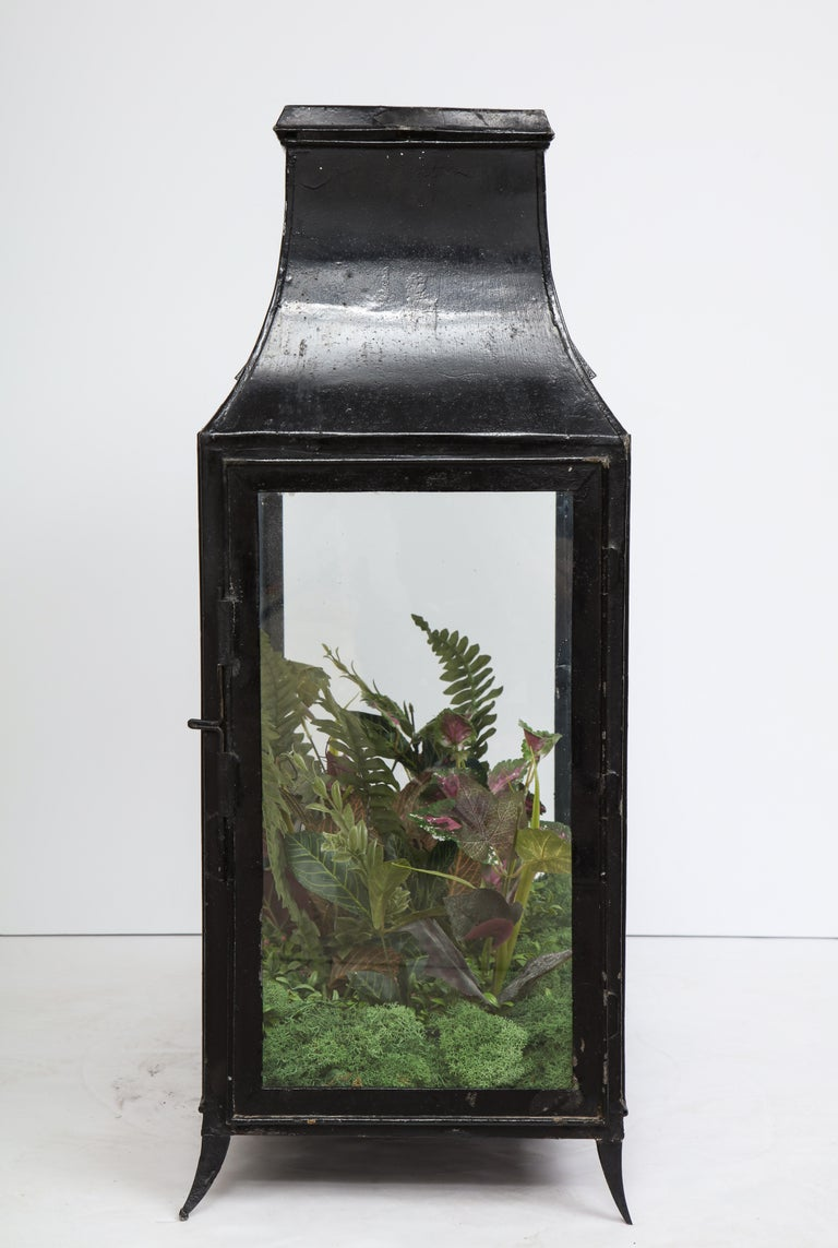 20th Century Spacious Glass Terrarium For Sale