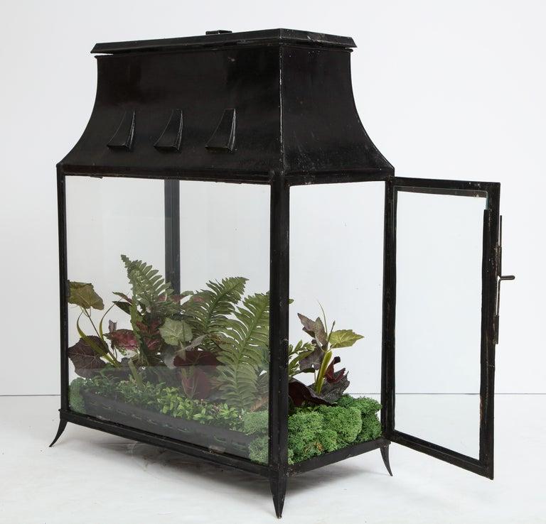 Metal Spacious Glass Terrarium For Sale