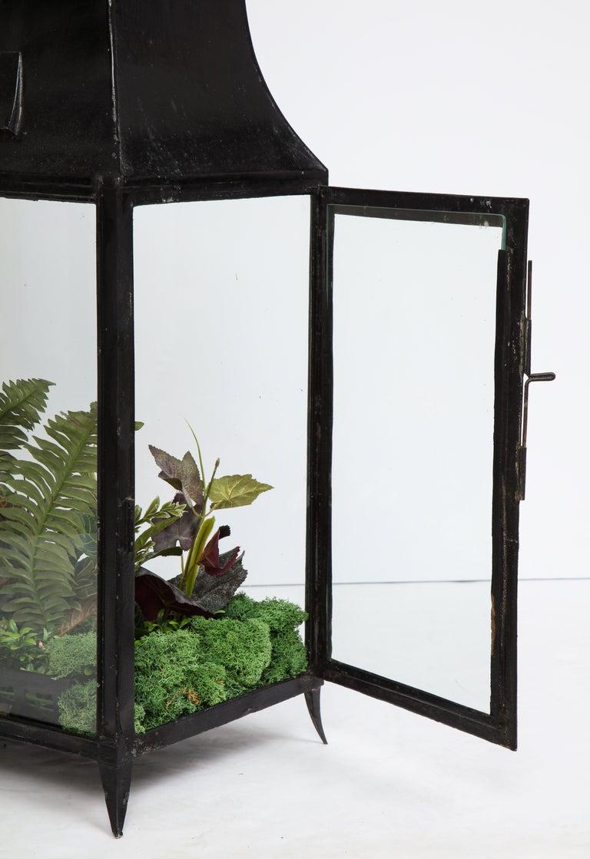 Spacious Glass Terrarium For Sale 2