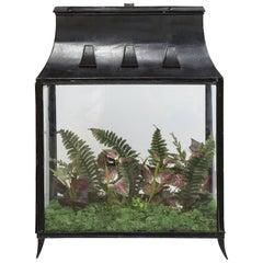 Spacious Glass Terrarium