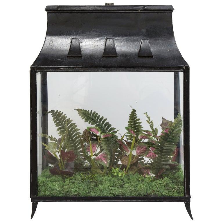 Spacious Glass Terrarium For Sale