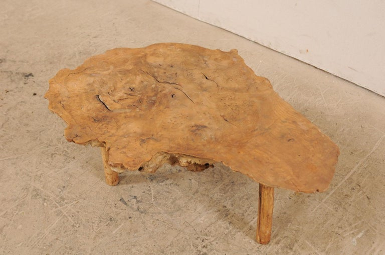 Spanish Antique Live-Edge Burl Wood Coffee Table For Sale 6