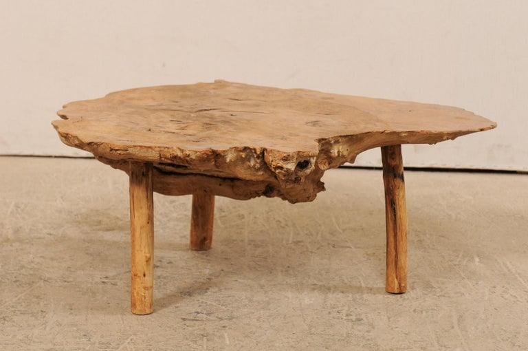 19th Century Spanish Antique Live-Edge Burl Wood Coffee Table For Sale