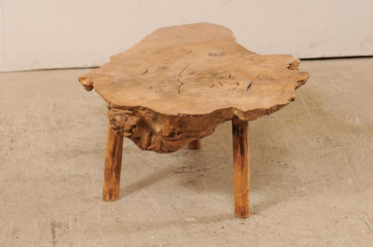 Spanish Antique Live-Edge Burl Wood Coffee Table For Sale 1