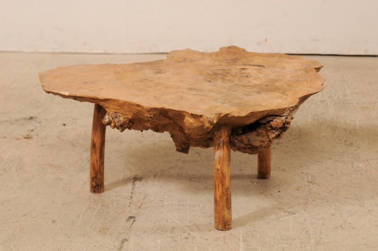 Spanish Antique Live-Edge Burl Wood Coffee Table For Sale 2
