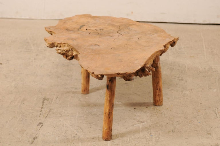 Spanish Antique Live-Edge Burl Wood Coffee Table For Sale 3
