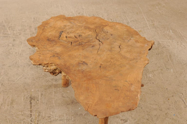 Spanish Antique Live-Edge Burl Wood Coffee Table For Sale 4