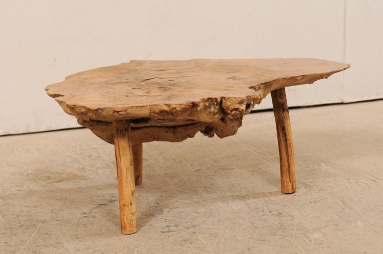 Spanish Antique Live-Edge Burl Wood Coffee Table For Sale 5