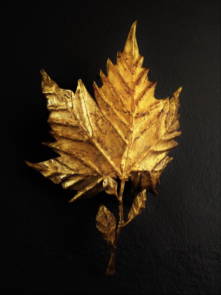 Spanish Mid-Century Modern Gold Leaf Gilt Iron Leaf Design Wall Light Fixture For Sale 1