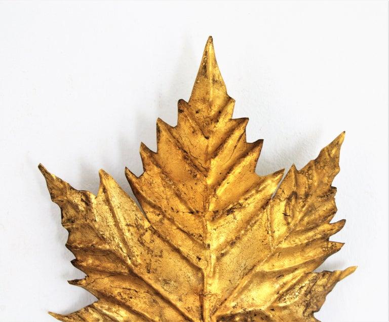 Spanish Mid-Century Modern Gold Leaf Gilt Iron Leaf Design Wall Light Fixture For Sale 2