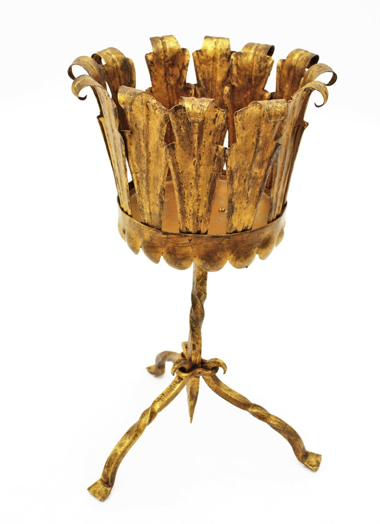 Spanish Mid-Century Modern Wrought Gilt Iron Leafed Planter in Gothic Style For Sale 5