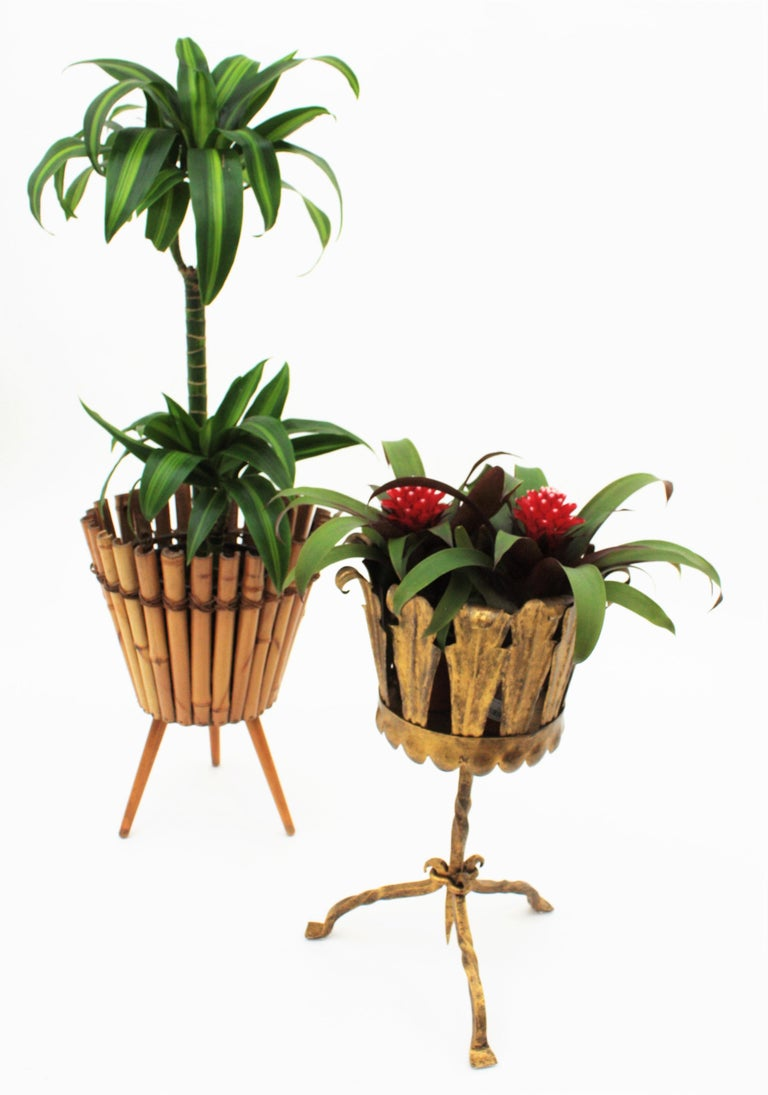 Spanish Mid-Century Modern Wrought Gilt Iron Leafed Planter in Gothic Style For Sale 8