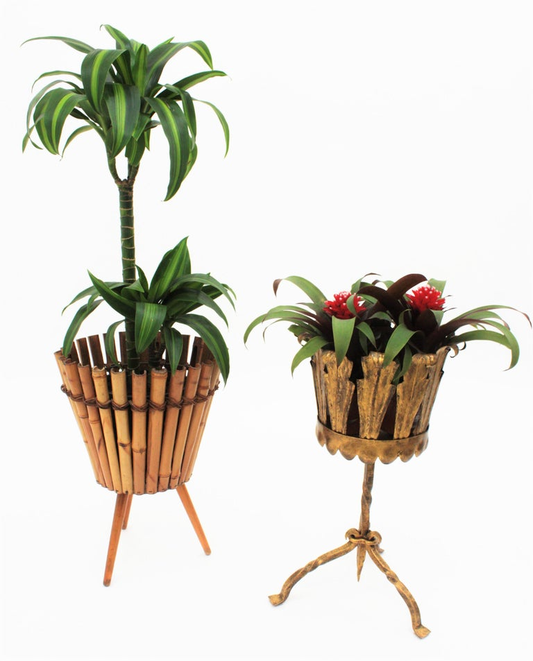 Spanish Mid-Century Modern Wrought Gilt Iron Leafed Planter in Gothic Style For Sale 11