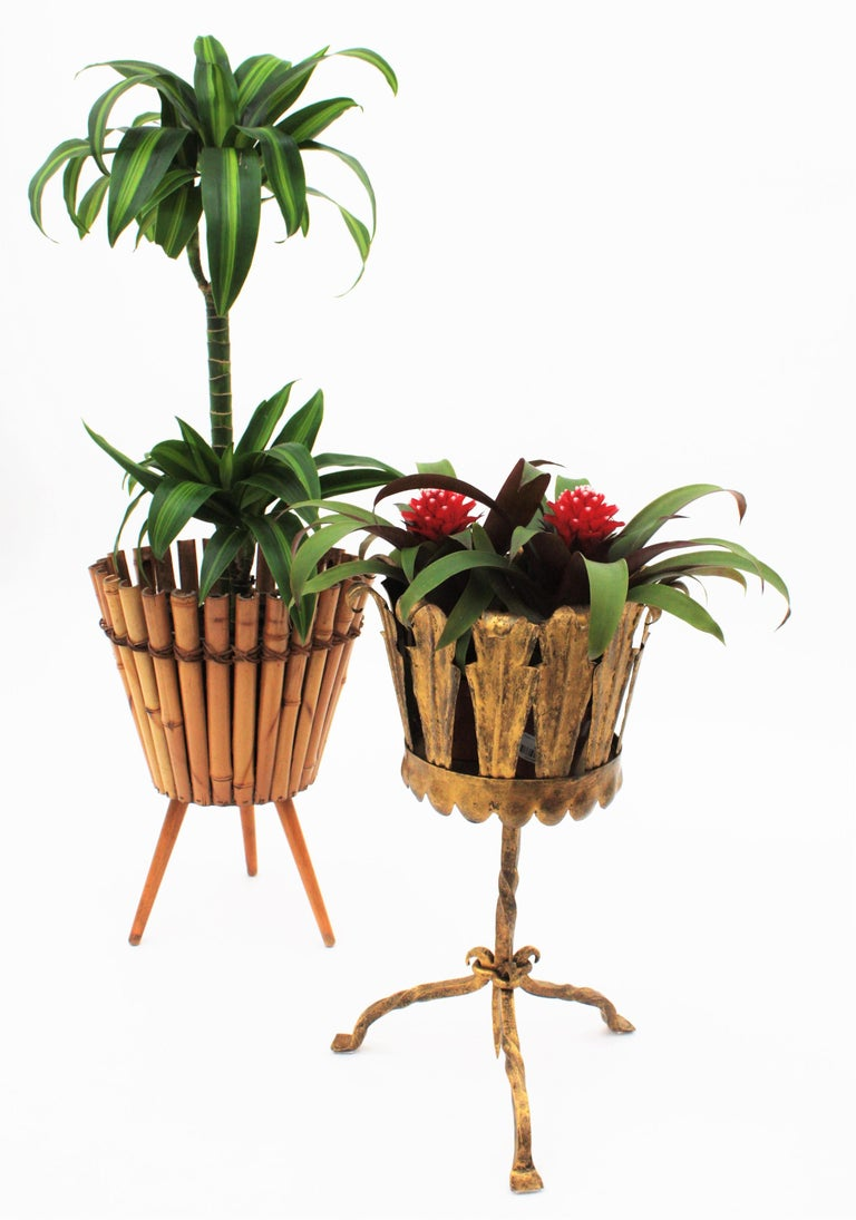 Hammered Spanish Mid-Century Modern Wrought Gilt Iron Leafed Planter in Gothic Style For Sale