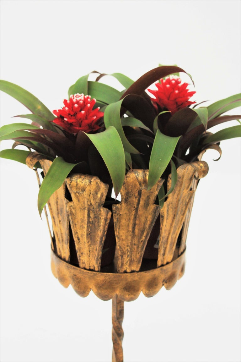 Spanish Mid-Century Modern Wrought Gilt Iron Leafed Planter in Gothic Style For Sale 4