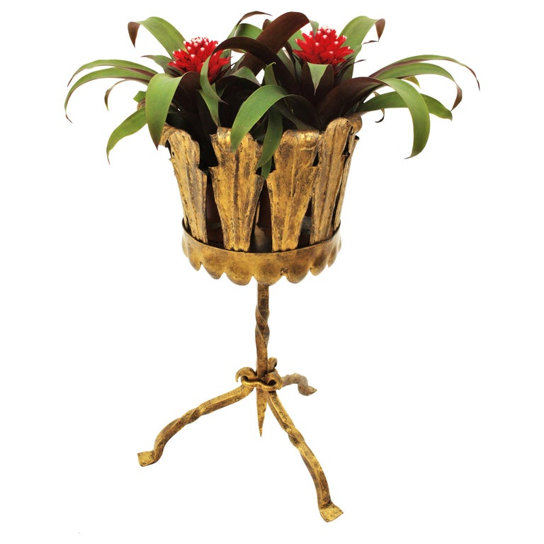 Spanish Mid-Century Modern Wrought Gilt Iron Leafed Planter in Gothic Style For Sale